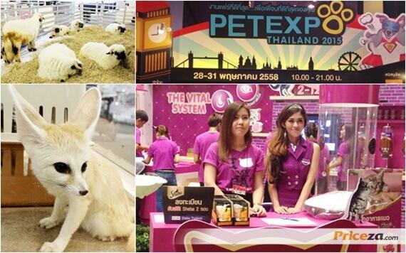 รีวิว บรรยากาศงาน PET EXPO THAILAND 2015